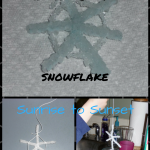 Borax Snowflake - Step by Step Instructions